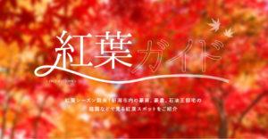新潟市内の紅葉ガイド
