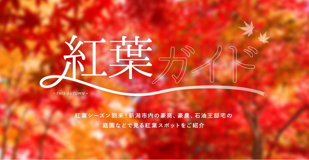 新潟市内の紅葉ガイドをご紹介